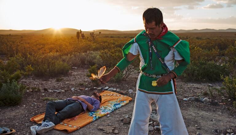 Peyotl : j'ai mangé le cactus à la mescaline et j'ai rencontré un extraterrestre