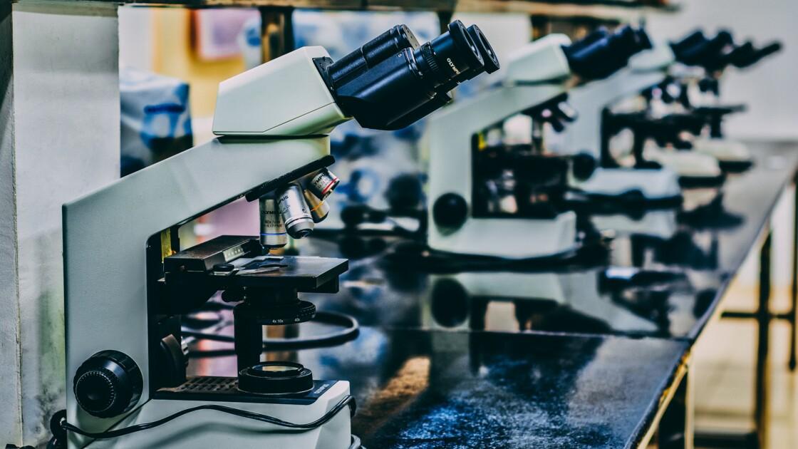 """Ces scientifiques américains affirment avoir """"fait rejeunir"""" de 2,5 ans les patients de leur étude"""