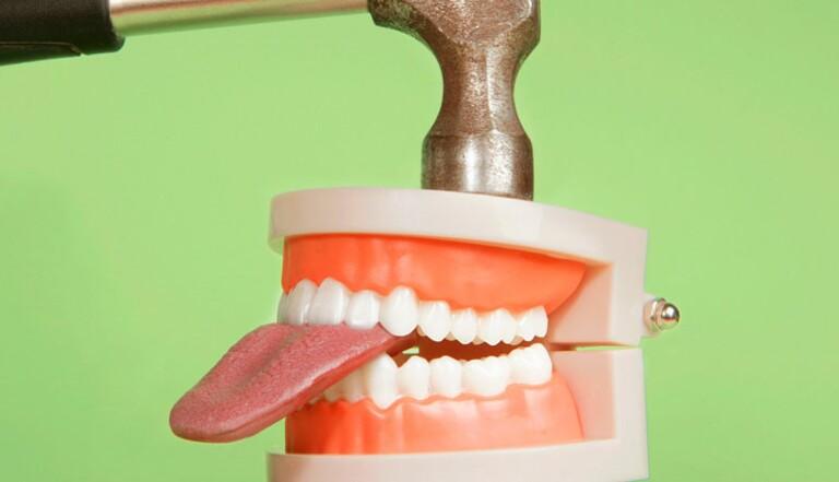 Pourquoi on ne se mord pas la langue quand on mange (généralement...)