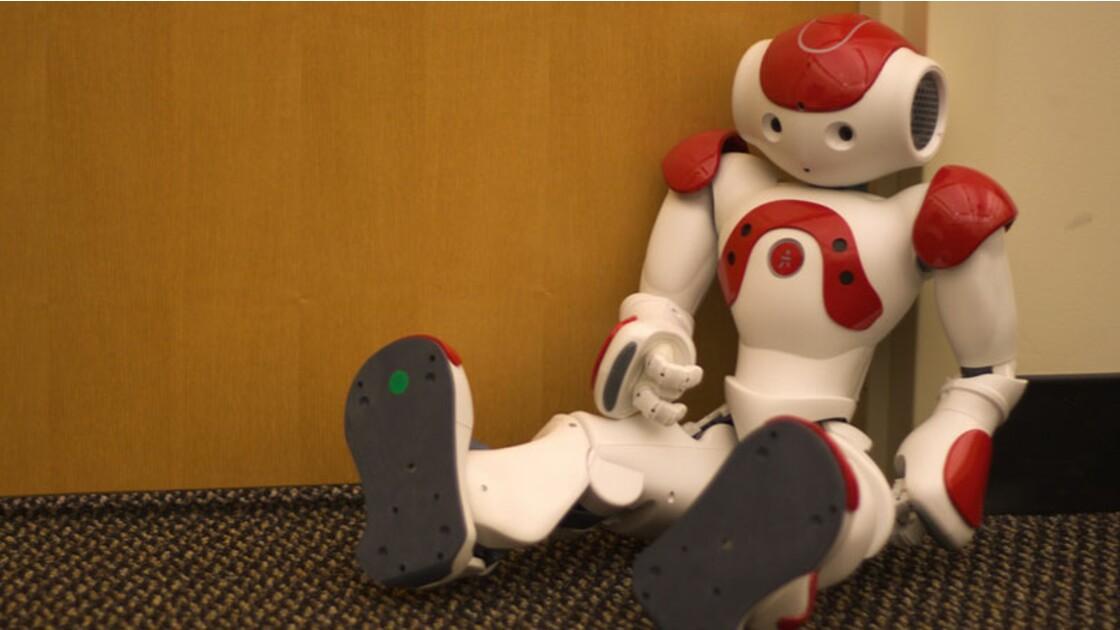 Quelles émotions peut-on ressentir face à un robot ?