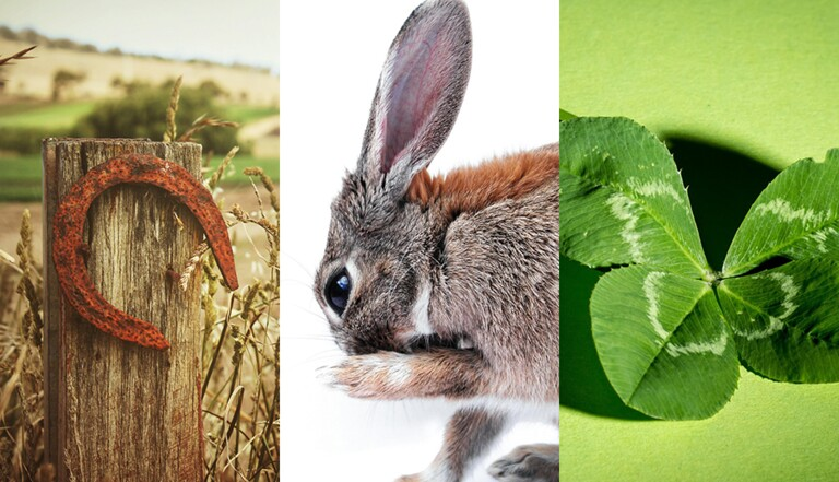 Trèfle à quatre feuilles, fer à cheval, patte de lapin : d'où viennent nos porte-bonheurs ?