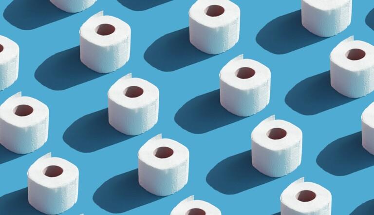 Papier toilette : un simulateur pour calculer le temps qu'il nous reste