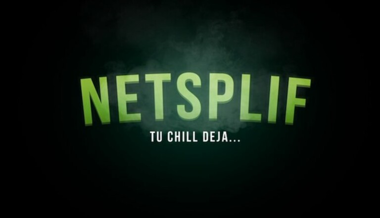 Découvrez Netsplif, la plateforme vidéo des amateurs de weed
