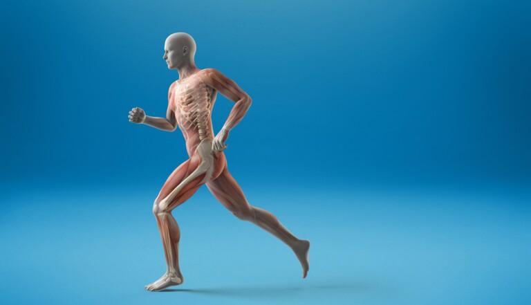 Voici ce qu'il se passe dans notre corps en 1 minute