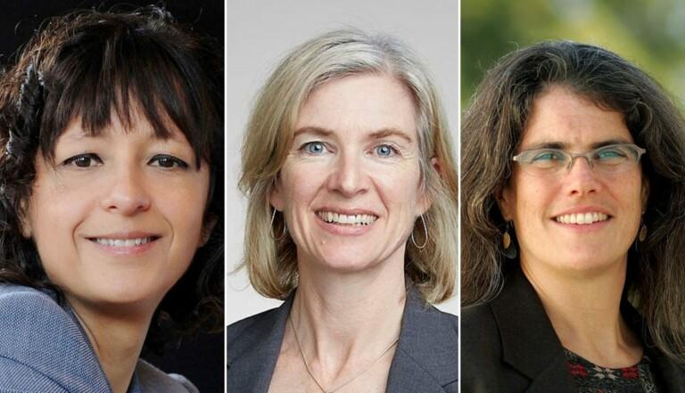 Les femmes et le Nobel : année exceptionnelle ou le début d'un vrai changement?