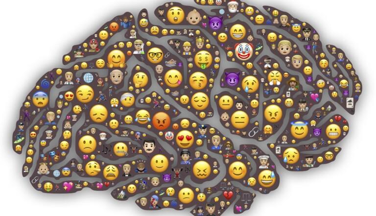 Dans le cerveau d'Anna : voici ce qu'il se passe dans notre tête au cours d'une journée