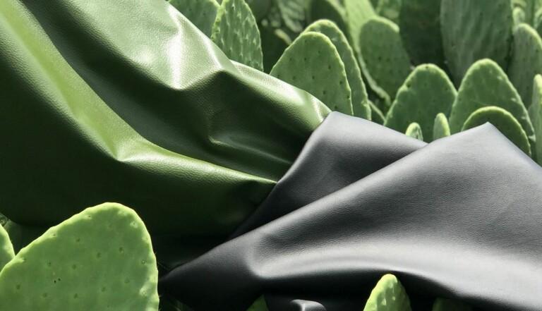 Cactus, ananas, liège… quelques alternatives au cuir