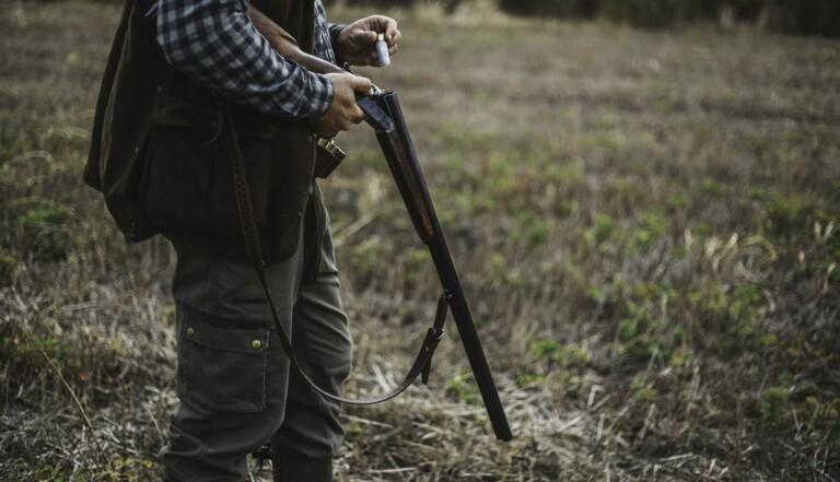 """TRIBUNE : """"Morts, violences et abus liés à la chasse : plus jamais ça !"""""""