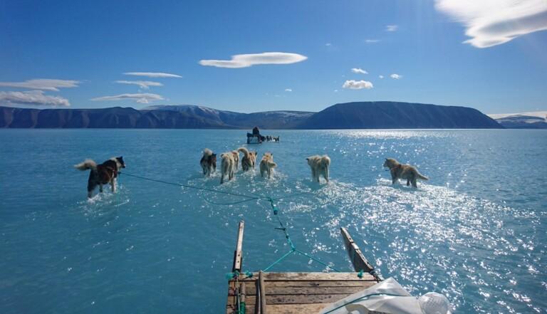 En une journée, le Groenland a perdu 2 milliards de tonnes de glaces