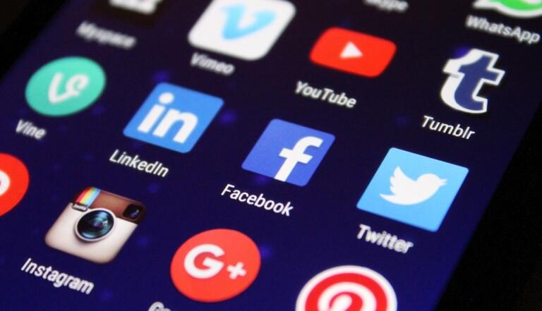 Loi sur la haine en ligne : les opposants craignent une censure généralisée