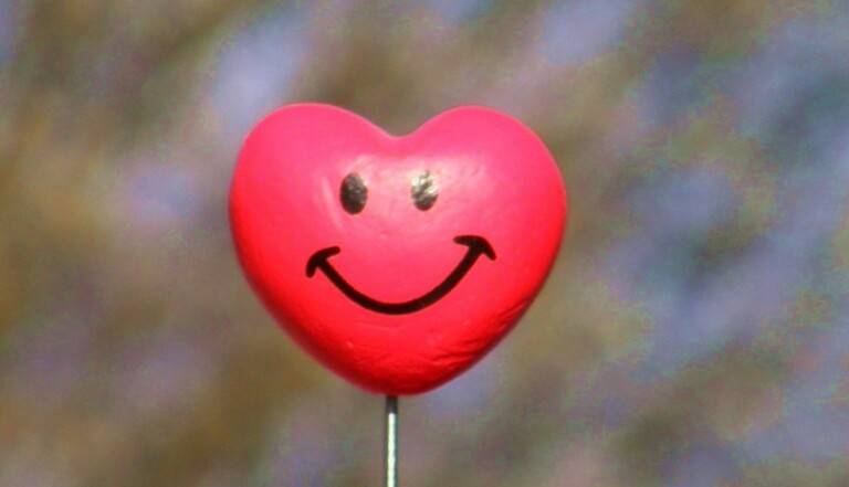 Les savoirs inutiles : Spécial bonheur