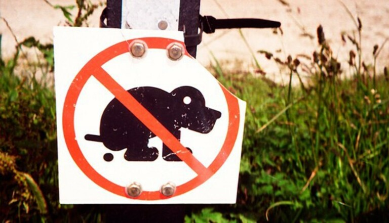 La police scientifique contre les crottes de chien