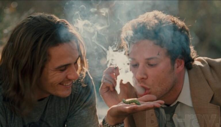 Le cannabis, bon pour les os ?