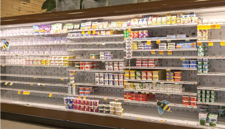 Voici à quoi ressembleraient nos supermarchés sans les abeilles