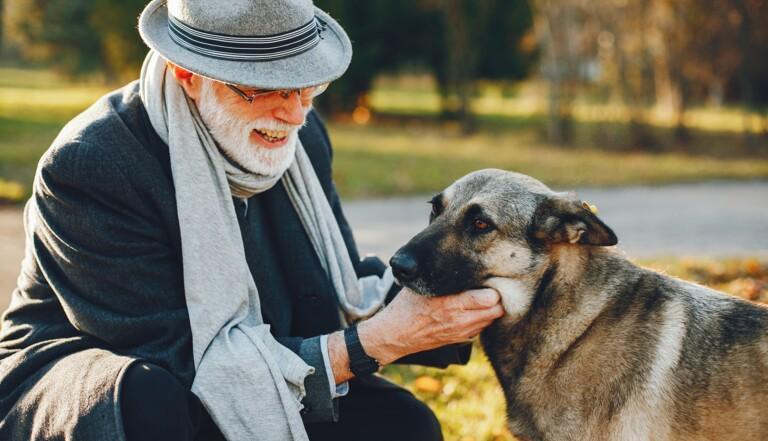 La barbe d'un humain contient plus de bactéries que le pelage d'un chien