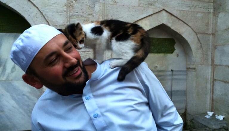 À Istanbul, un imam ouvre les portes de sa mosquée à des chats