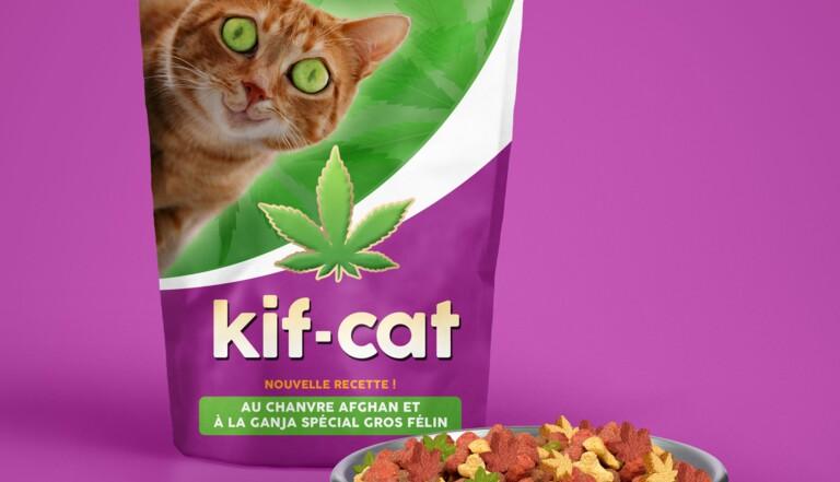 Camembeuh, café Marie-Jeanne et kif-cat : quand le cannabis pénètre notre quotidien