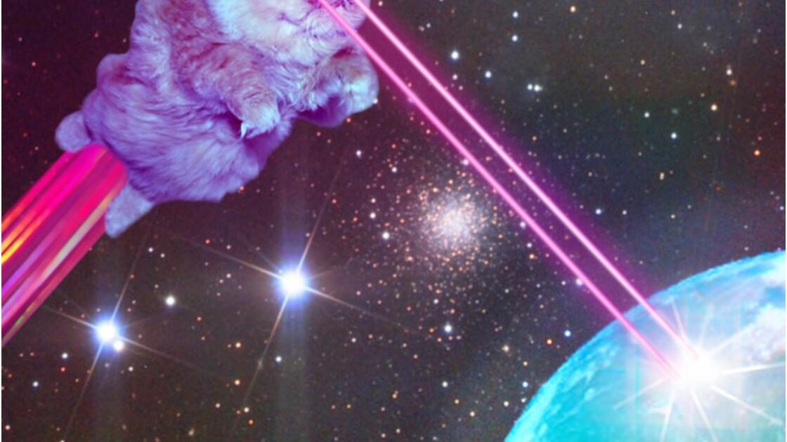 Les chats domineront bientôt le monde et voici pourquoi...