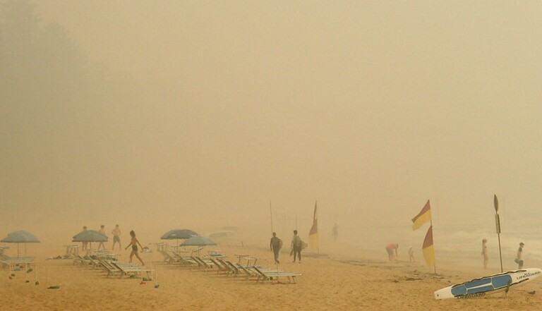 Incendies en Australie : 7 chiffres et images pour comprendre l'ampleur de la situation