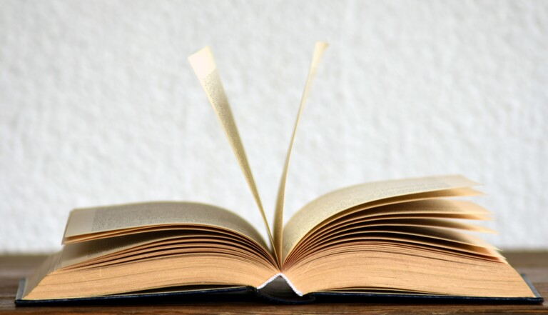 Le Petit Robert 2022 a tranché : LE covid fait son entrée dans le dictionnaire