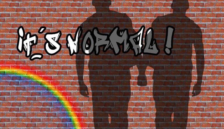 Moins de cas mais pas moins de violences : SOS homophobie publie son rapport 2020