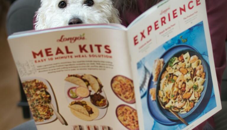 Pour réduire les crottes de votre chien, servez-lui une alimentation proche de la nôtre