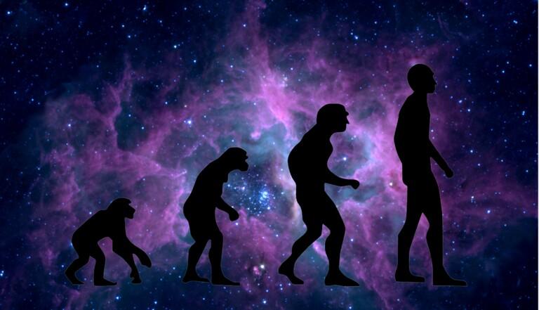 Comment la taille du corps humain évolue en fonction des changements climatiques
